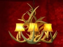 Real mule deer reindeer antler chandeliers ragged mountain this compact yet full chandelier is made with curly whitetail and mule deer antlers for height whitetail antlers hug and dip down between the lights aloadofball Choice Image